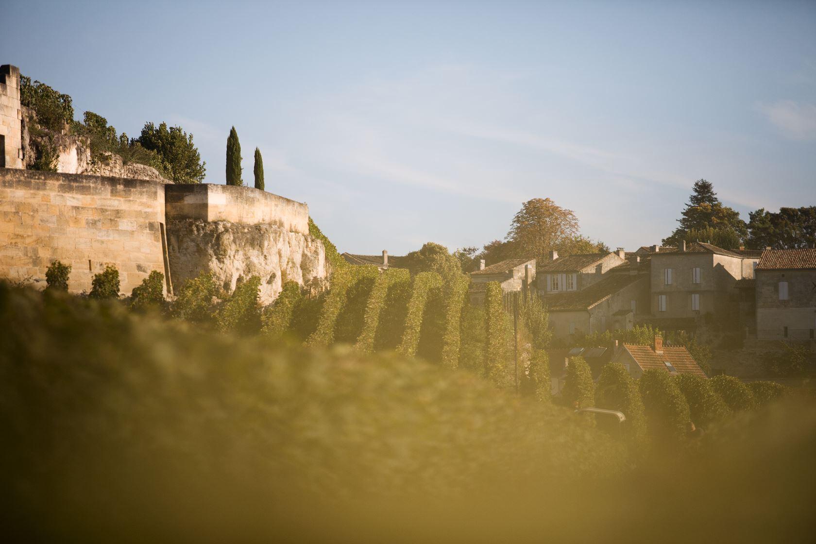 Coteaux Saint-Emilion